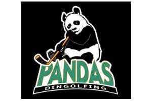 pandas_dgf